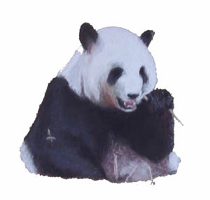 Art_work-giant_panda2.jpg